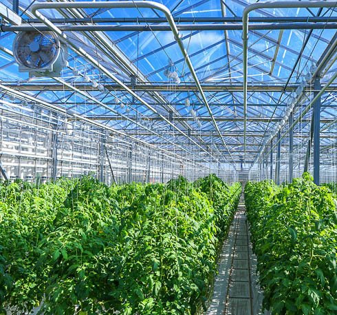 greenhouse climate control based on atmospheric water generation